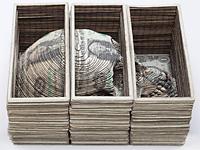 Скульптуры из бумаги и денег