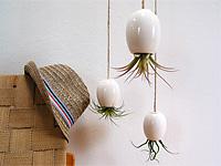 Перевёрнутые и подвешенные керамические горшки для цветов