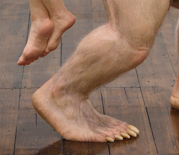 Когтистая нога фото
