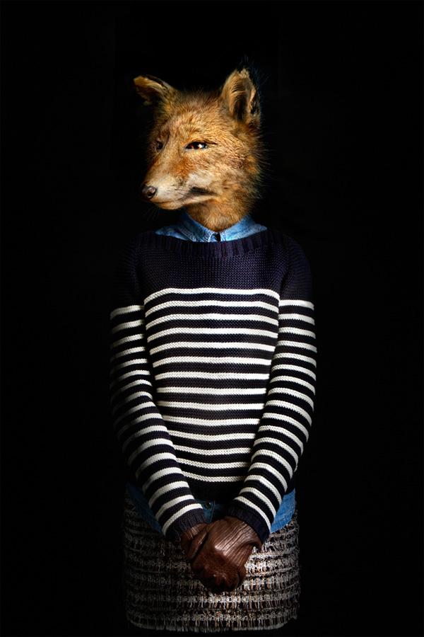 Лисица в свитере